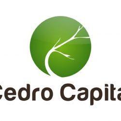 cedro capital