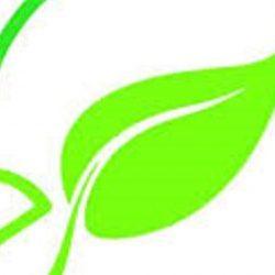 silo verde logo